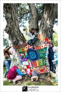 woolly tree 6