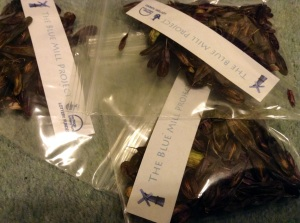 packets woad